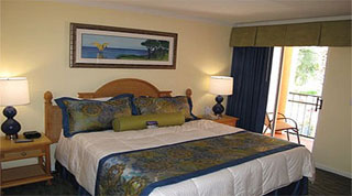 Holidays in Blue Tree Resort Special Offers and Deals  by TailorMadeFlorida.com