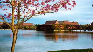 Holidays in Disney's Polynesian Resort by TailorMadeFlorida.com