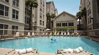 Holidays in Homewood Suites by TailorMadeFlorida.com