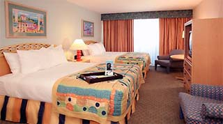 Holidays in Orlando Vista Hotel by TailorMadeFlorida.com