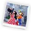 Things to do at Walt Disney World